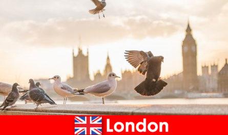 Tempat menarik di London untuk pelawat antarabangsa
