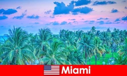 Miami menakjubkan alam semulajadi dengan hutan tropika yang hebat