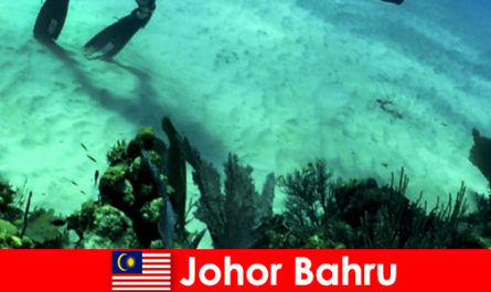 Aktiviti pengembaraan di Menyelam Johor Bahru, memanjat, Kembara Berjalan kaki dan banyak lagi