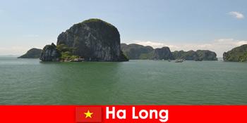 Lawatan bot untuk pengusaha percutian ke gergasi batu di Ha Long Vietnam