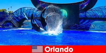 Tempah perjalanan individu untuk warga asing di Orlando Amerika Syarikat