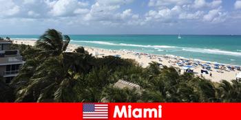 Ombak pantai berpasir sawit menanti percutian jangka panjang di paradisiacal Miami Amerika Syarikat