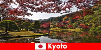 Lawatan ke luar negara ke Kyoto Jepun untuk pewarna foliage musim luruh yang terkenal